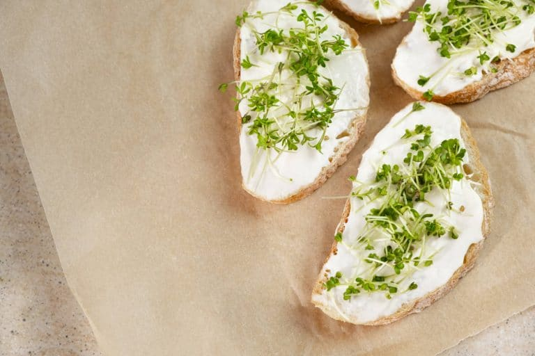 14 Healthy Cream Cheese Substitutes