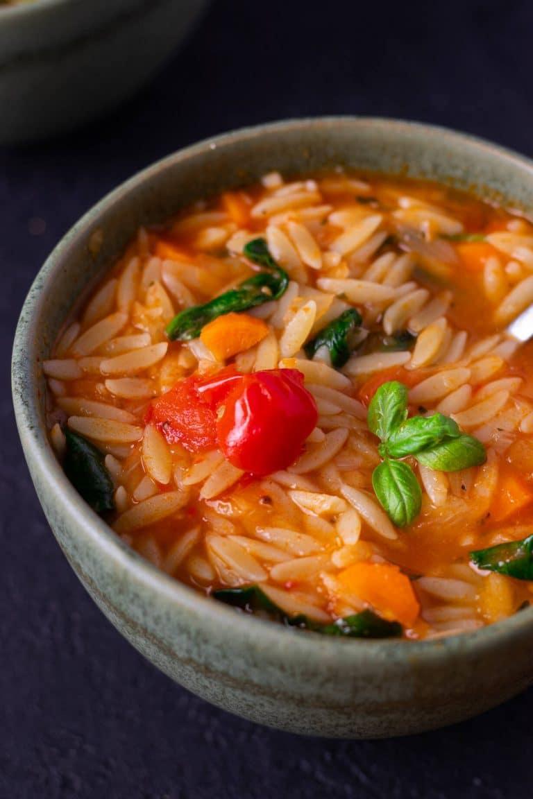 Simple Veggie Orzo Soup
